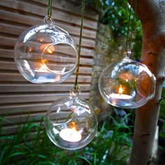 I've just found Set Of Three Hanging Tealight Bubbles. Sweet yet elegant fine handblown glass tealight holder bubbles for your home or garden. Alternatively fill with airpalnts to use as a terrarium. Christmas Gift Guide, Christmas Home, Christmas Bulbs, Christmas Decorations, Hanging Decorations, Xmas, Table Decorations, Hanging Tea Lights, Unique Wedding Centerpieces