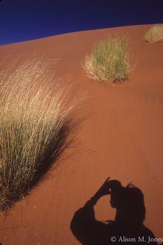 © Alison M. Jones #dune #sand #shadow #nature