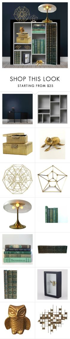 """""""Brass & books"""" by bindingspine ❤ liked on Polyvore featuring interior, interiors, interior design, home, home decor, interior decorating, Global Views, CB2, Mitchell Gold + Bob Williams and Reggiani"""