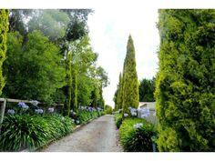 1000+ images about Driveway on Pinterest   Driveways ...