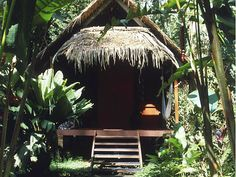 I'll take it!! --> CARIBE SUR Real Estate: Life's a beach with cozy Costa Rica bungalows at bargain rates
