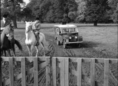 Land Rover series, horses