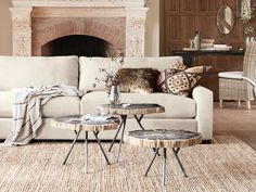 Trio Petrified Coffee Table Set | Arhaus Furniture