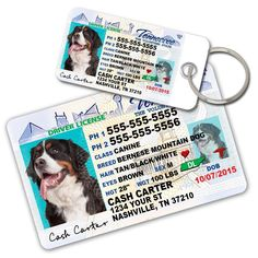 Tennessee Driver License Custom Dog Tags for Pets (2) and Wallet Card - Personalized Pet ID Tags - Dog Tags For Dogs - Dog ID Tag - Personalized Dog ID Tags - Cat ID Tags - Pet ID Tags For Cats * You can get more details by clicking on the image. (This is an affiliate link and I receive a commission for the sales)