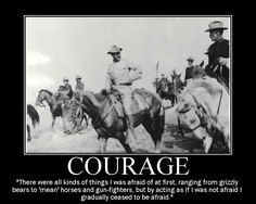 Motivational Posters: Theodore Roosevelt on Courage Teddy Roosevelt Quotes, Theodore Roosevelt, Alice Roosevelt, Wisdom Quotes, Life Quotes, Quotes Quotes, Cover Quotes, Happiness Quotes, Sport Quotes