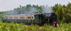 Take a nostalgic ride on the North Borneo Railway on a steam train through the sub urban country side of Kota Kinabalu