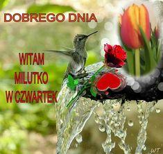 Good Morning, Bird, Christmas Ornaments, Holiday Decor, Polish, Quotes, Buen Dia, Bonjour, Birds
