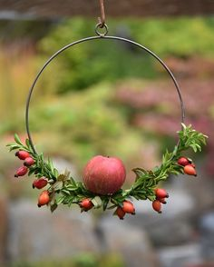 Polubienia: 4 kommentarer: 49 - Zetas Garden (Zetas Garden) efter Ins . Christmas Makes, Christmas Time, Christmas Wreaths, Christmas Crafts, Xmas, Christmas Ideas, Seasonal Decor, Fall Decor, Fall Crafts