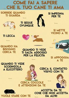 #dogs #love #cani #amore