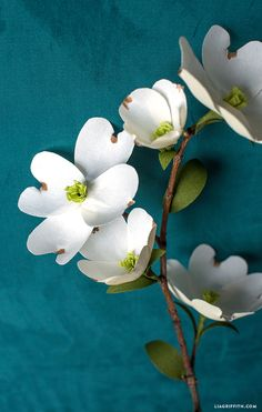 As part of our Pacific Northwestern bouquet for Cricut, create your own crepe paper dogwood! Made using the all-new Cricut Maker, available August Paper Flowers Diy, Handmade Flowers, Flower Crafts, Diy Paper, Paper Art, Paper Crafts, Flower Diy, Dogwood Flower Tattoos, Dogwood Flowers
