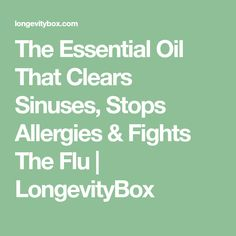 The Essential Oil That Clears Sinuses, Stops Allergies & Fights The Flu   LongevityBox