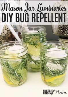 Tired of getting eaten alive when you step outside? Instead of lathering yourself with sticky bug spray or hovering near a citronella candle, take a few minutes to whip up this all natural homemade bug repellent. These mason jar luminaries are not only an Pot Mason Diy, Mason Jar Crafts, Mason Jar Party, Do It Yourself Organization, Pot Pourri, Citronella Candles, Mason Jar Candles, Plants In Mason Jars, Insect Repellent