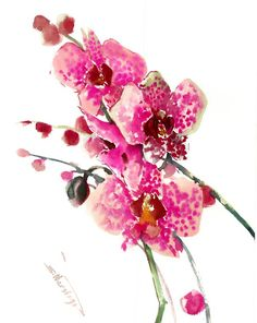 Buy Pink  Orchids, Watercolor by Suren Nersisyan on Artfinder. Discover thousands of other original paintings, prints, sculptures and photography from independent artists. Original Art, Original Paintings, Watercolor Flowers, Watercolour, Pink Orchids, Paper Tags, Paintings For Sale, Lovers Art, Impressionist
