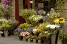 A beautiful display seems even prettier when it's in Paris, France.
