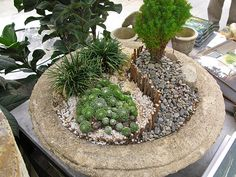 create a miniature landscape - ex terrain