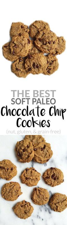 The BEST Soft Paleo Chocolate Chip Cookie. Nut, grain, gluten & dairy-free. SO easy to make! Allergy-friendy and the best cookie for dipping in your favorite allergy-friendly milk!