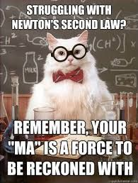 Newton's Second Law states that there is a direct, proportional relationship between the acceleration of an object, the mass of an object, and the net force acting on an object. The picture of the smart cat refers to the equation we get from this law: F=ma or force=mass x acceleration