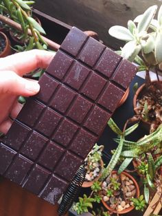 True story: I eat a few squares of a raw cacao bar every day after lunch. It is one of my favorite daily rituals, and because I have both a very particular and expensive taste in chocolate, I started experimenting with making my own.  Using a fancy
