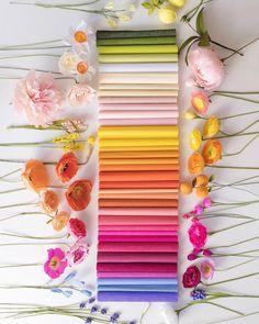 37 ideas flowers pink white floral design for 2019 Crepe Paper Flowers, Paper Roses, Felt Flowers, Diy Flowers, Fabric Flowers, Diy Paper, Paper Crafts, Paper Bouquet, Paper Flower Tutorial