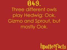 hp fact 049