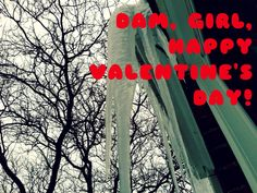 Happy Valentine's Day from the Mold House!