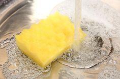 Hiusharjat, meikkisudit ja keittiösienet puhtaaksi - näin usein nämä pitäisi pestä