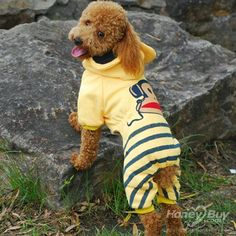 HoneyBuy to provide every customer an educated and valued shopping experience while walking you through all the steps of finding your pet dog coat. We want to offer your perfect look with the freedom and ability on any budget http://www.honeybuy.com/Super-Cute-Paul-Frank-Pattern-Cotton-Stripe-Hooded-Dog-Coats