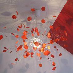 De Du Meilleures Tableau 8 Images Rose Petale xqOpnAaw