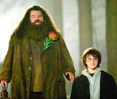 And though Robbie Coltrane plays a half-giant alongside Harry Potter, he's really only eight inches taller than Daniel Radcliffe. Harry Potter World, Harry Potter Movie Trivia, Harry Potter Parts, Harry Potter Universal, Harry Potter Characters, Rubeus Hagrid, Harry Potter Background, Robbie Coltrane, Harry Potter Movies