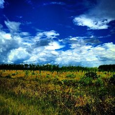 Blue skies in Waycross, #Georgia.
