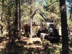 #Autocargador #forestal #JohnDeere 1510E IT4 cargando madera en el monte. #maquinaira #silvicultura #nothingrunslikeadeere