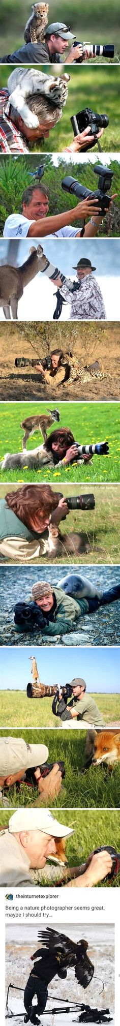 Online Photography Jobs - This is why I don't open iFunny in public Photography Jobs Online Funny Animal Jokes, Cute Funny Animals, Funny Animal Pictures, Animal Memes, Funny Cute, Hilarious, Funny Photos, Photography Jobs, Photography Lighting