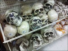 Skulls in Endless Basket as Halloween Fixturing Tradition Halloween Traditions, Halloween Skull, Skulls, Basket, Traditional, Holiday, Retail, Vacations, Holidays