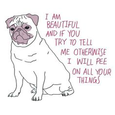 I am beautiful and if you try to tell me otherwise I will pee on all of your things