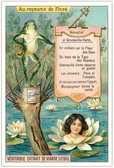 Héraldie: Au royaume de Flore