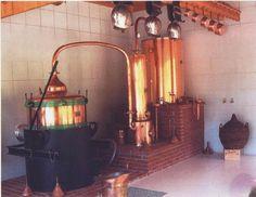 CAVE DE CHAMPAGNE OUDARD.  A Villenauxe-la-Grande, petit village niché dans un écrin de forêt et de vigne, François et Chantal Oudard, propriétaires récoltants, auront le plaisir de vous guider dans leur cave pour vous faire partager l'amour de leur métier : le travail de la vigne, la distillerie artisanale et l'élaboration du vin de Champagne. Coffrets cadeaux à découvrir, visites et dégustations sur rendez-vous, vols en montgolfière...