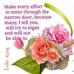 """Luke 13:24 ~ """"Make every effort to enter through the narrow door, because many, I tell you, will try to enter and will not be able to."""""""