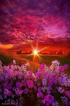 Stunningly beautiful! | nature | | sunrise | | sunset | #nature https://biopop.com/
