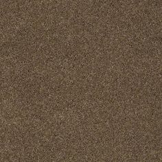 Color: 00704 Welsh Hill CCS10 Pashmina I - Shaw Caress Carpet Georgia Carpet Industries