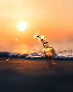 Tale of waves and wind by Ashraful Arefin Miniature Photography, Glass Photography, Cute Photography, Flower Photography, Cool Pictures For Wallpaper, Love Wallpaper, Cute Images For Dp, Happy Evening, Josi