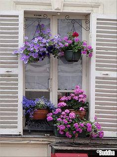 ╰⊰✿ Window boxes ✿ Fenêtre fleurie à Montmartre
