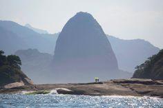 Rogério Reis | PICDIT