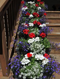Fourth of July themed colors – red and white geraniums and blue lobelia Container Flowers, Flower Planters, Container Plants, Container Gardening, Flower Pots, Succulent Containers, Fall Planters, Flower Ideas, Vegetable Gardening
