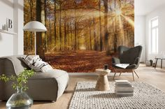 """The first sunrays of the day dive the autumn forest into golden light. (Photomural Komar """"Golden Dawn"""", 8-997)"""