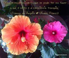 """""""O maior reconhecimento que se pode ter em fazer o que é certo é a consciência tranquila."""" (Joanna de Ângelis / Divaldo Franco)"""