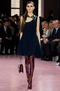 Christian Dior Fall 2015 Ready-to-Wear Fashion Show - Valery Kaufman (Elite)