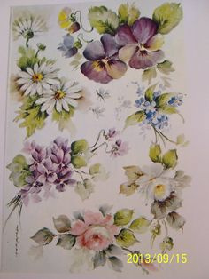 Floral Print Study 1 Daisy Pansy Rose Violet Forget Me not B Ruby Huckett | eBay