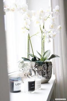 Living room details - Adalmina's Secret