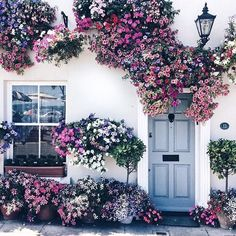 the most gorgeous flowery house! The village of Deal, Kent