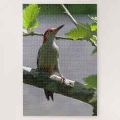 Red-bellied Woodpecker Photo Puzzle. Jigsaw Puzzle - red gifts color style cyo diy personalize unique
